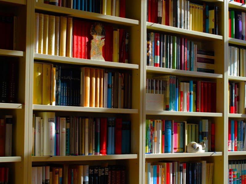 bookshelf-4814980_1280